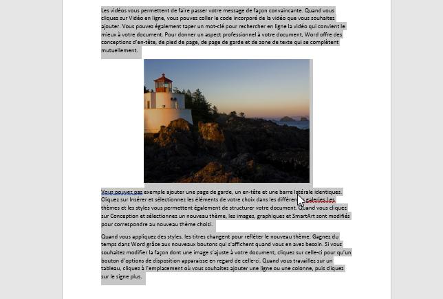 Convertir Word en JPEG - sélectionnez le contenu que vous souhaitez convertir