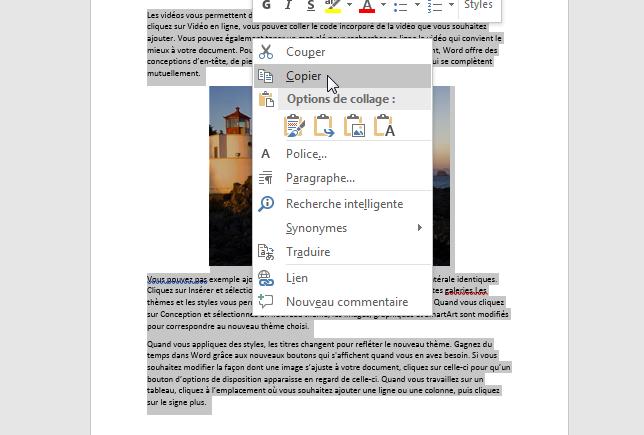 Copier la page du document Word à convertir en JPEG
