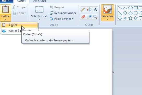 Coller l'image du fichier Excel à convertir en JPG